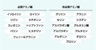 日本豆腐協会│豆腐と健康